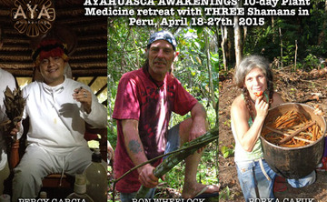 10 Day Plant Medicine Retreat With 3 Shamans