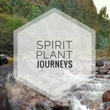 August 1-10, 2017 – 10 Day Ayahuasca & San Pedro Retreat