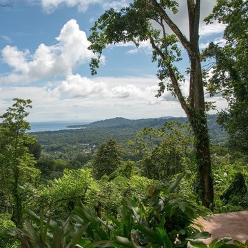 Grace in Nature A Women's Yoga Retreat to Costa Rica