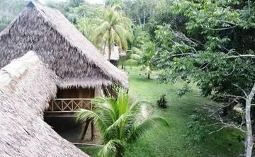 Ayahuasca Retreat in the Amazon Jungle near Iquitos Peru