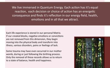 Quantum Plexus Bio Energy Therapy 3 Day Training & Retreat
