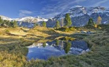 Swiss Alps Ayahuasca retreat (Apr 2018)