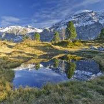 Swiss Alps Ayahuasca retreat (May 2018)