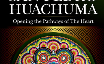 San Pedro/Huachuma, Ayahuasca, and the plant medicine healing process: An evening talk and book signing with ayahuasquero Javier Regueiro at Reflections Yoga Studio, New York City