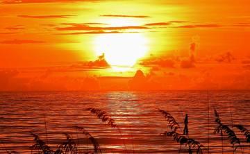 Cocoa Beach Wellness Surf and Yoga Retreat