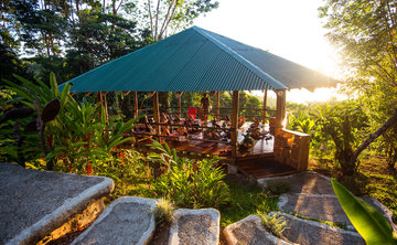 Align to Shine: Jungle Adventure Yoga Retreat
