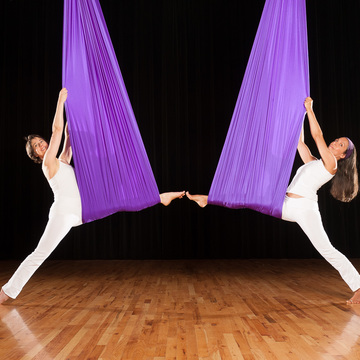 Chakra Aerial Yoga Teacher Training