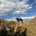 Frontierlab Peru