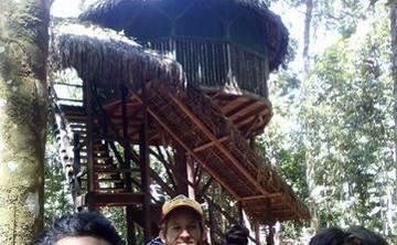 Ayahuasca Retreat 7-day