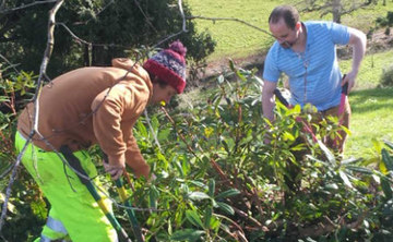 Volunteer every Tuesday in Sharpham's gardens Oct 3rd
