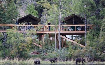 Bear Camp – 8 day Bear Viewing
