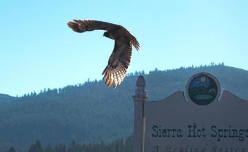 Winter Yoga Retreat at Sierra Hot Springs
