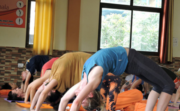 500 Hours Hatha Yoga Teacher Training Course in Rishikesh, India