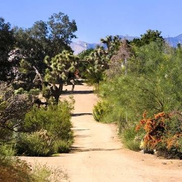 Joshua Tree Retreat Center