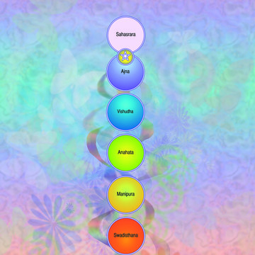 Working with our Chakras and Spiritual Anatomy – Part 7 of the Raja Yoga Series