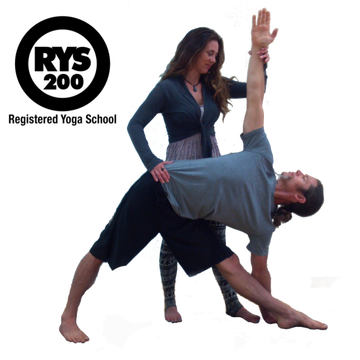 Vinyasa Arts 200 hour Yoga Teacher Training