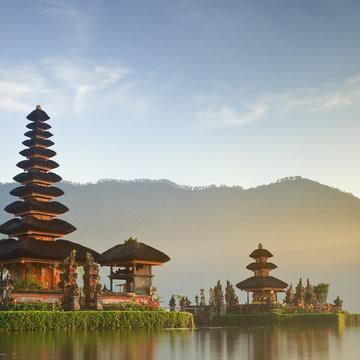 Ayahuasca Retreat in Bali, Indonesia for 2N/3D (Dec 9&10)
