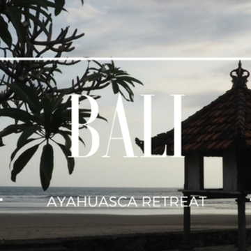 Bali Premium Ayahuasca retreat (Oct 2017)