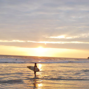 5 Day ReWilding, Yoga, and Surf Retreat: Ecuador's Sunshine Coast (Men & Women)