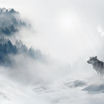 Howl - An 5Rhythms Embodiment New Year's Retreat