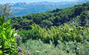 4-Day Luxury Yoga Retreat in Mallorca, Spain (SOLD OUT)