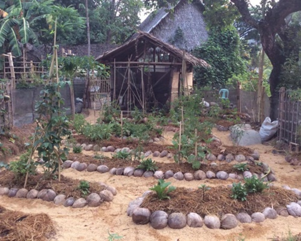 permahope shamanic permaculture design course spdc koh phangan
