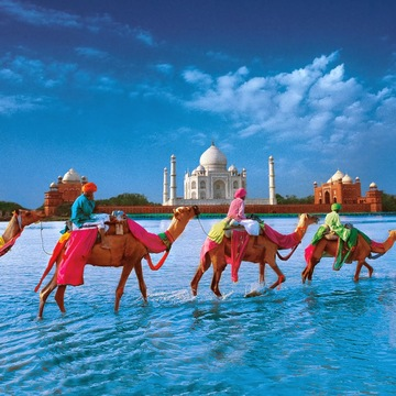 Discover the Guru Within - A 15-day Sacred Journey to 8 Cities in North India