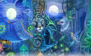 3 day 2 Night Ayahuasca Ceremony – Jan 19 – 21