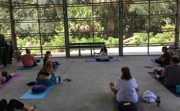 Hridaya Yoga and Meditation Workshop in the USA