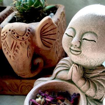 Grassroots Herbalism Certification Course 56hr.