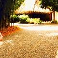 Vida Asana Eco-Retreat and Learning Center