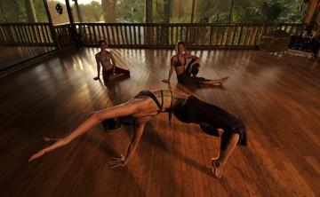 Advanced Danyasa Yoga Arts for Women: Live Fully . Live Artfully  Embody   Empower   Express (14% off)