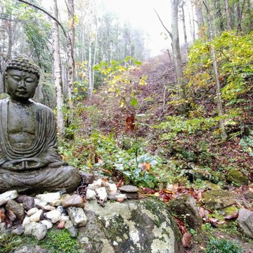 Buddhism and the Twelve Steps