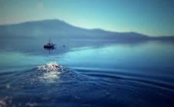 "The Magic Journey, ""Agua"" 6 Day Ayahuasca Retreat"