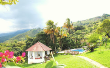 Ayahuasca Retreat in Cali, Colombia (March 2018)