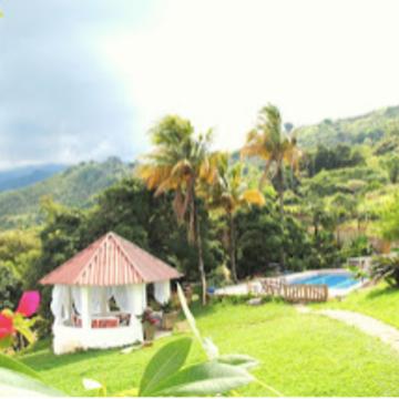 Ayahuasca Retreat in Cali, Colombia (Jan 2018)
