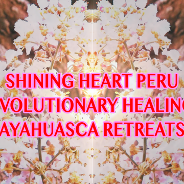 5 Night Ayahuasca Awakening, Evolutionary Healing Retreat, with 3 Ceremonies + Guidance & Integration in English