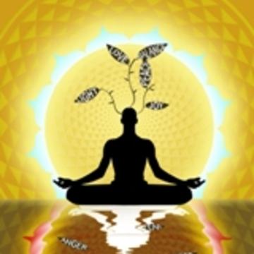7 Day Silent Meditation Retreat