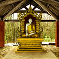 The Dharma Centre of Canada