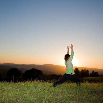 Raising Your Energy:  A Spiritual Yoga Retreat