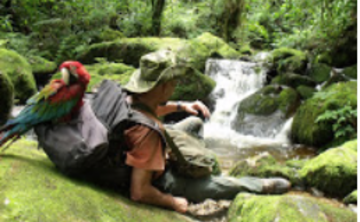 Ayahuasca Retreat in  Sacred Valley & Madre Selva High Jungle Retreat (ongoing)