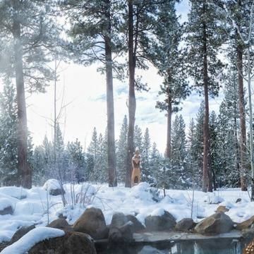 Sierra Hot Springs, California-Winter
