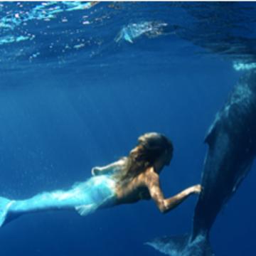 April 2018 Kauai Yoga Retreat