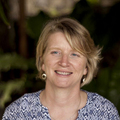 Sharon Nash, M.A.