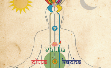 Sri Sri Ayurveda Bodywork & Health Practitioner Certification 1