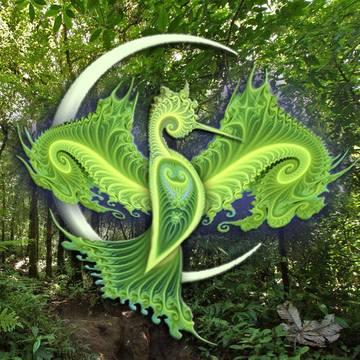 Sound of Light Sacred Medicine Circle