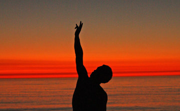 Work Study - Wisdom Healing Qigong: Wholeness is the Nature of the Self