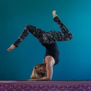 Pink Lotus Yoga