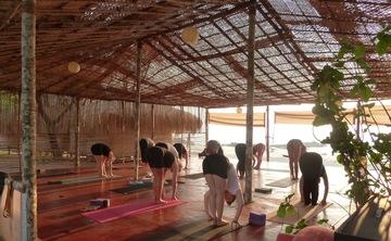 Dynamic Yoga Retreat