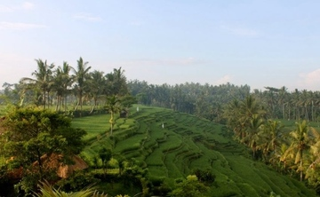 Blissful Bali Healing, Harmony & Happiness Yoga Retreat